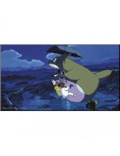 Póster Enmarcado Ghibli de...